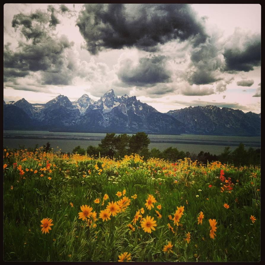 Mountain Mother, watch over your Flower Chlidren
