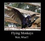 Motavational Monkey Poster