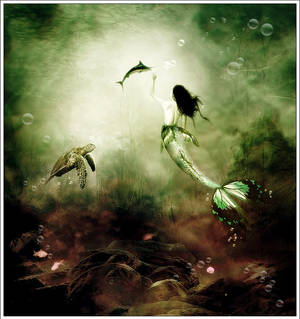 Aquatique  life