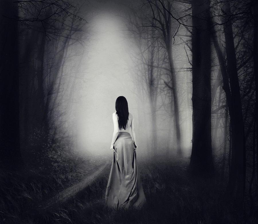 Šta je pisac hteo da kaže? - Majacvet - Page 2 Dark_Forest_by_Justine1985