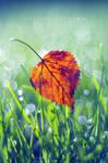 September Leaf by Justine1985