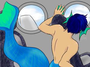 Merman In An Airplane