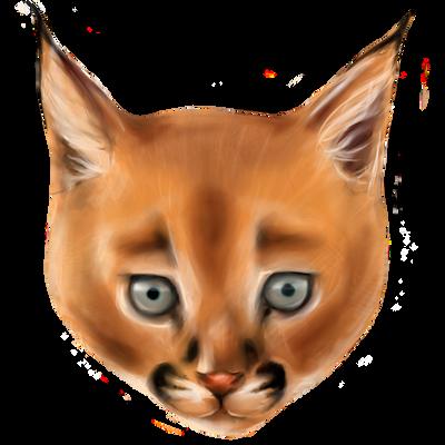 Grandere's Profile Picture
