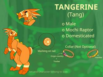 Tangerine Ref Sheet by Icee1241