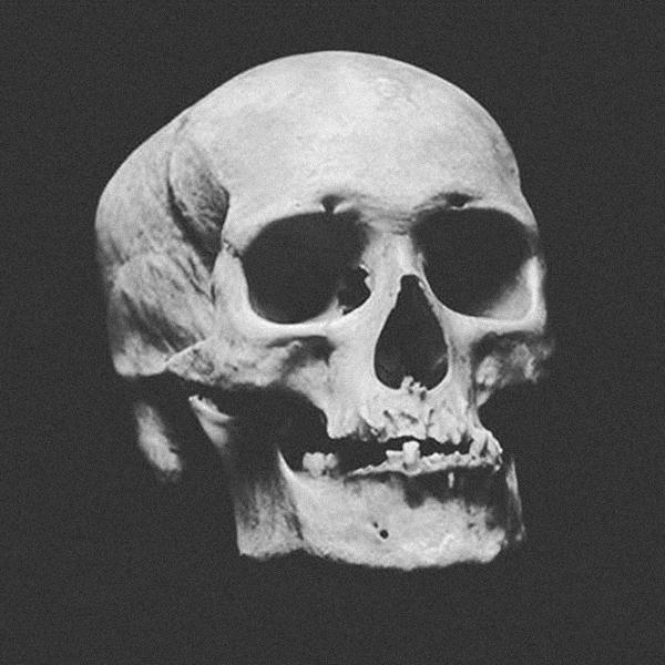 Skull Square INSTAGRAM account is alive by torvenius