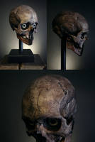 Trophy of enemy, decorated object 03 by torvenius