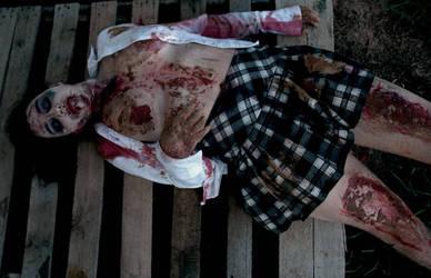 pt.2 Outbreak: Tragedy-Prev 1 by slephoto