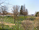 Arlington National Cemetery No. 1