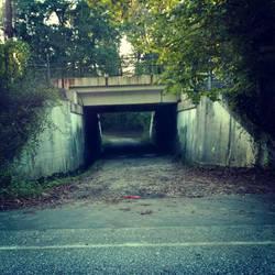 Weird bridge by slephoto