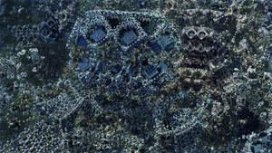 Tetra Menger Box - Mandelbulb 3D fractal by schizo604
