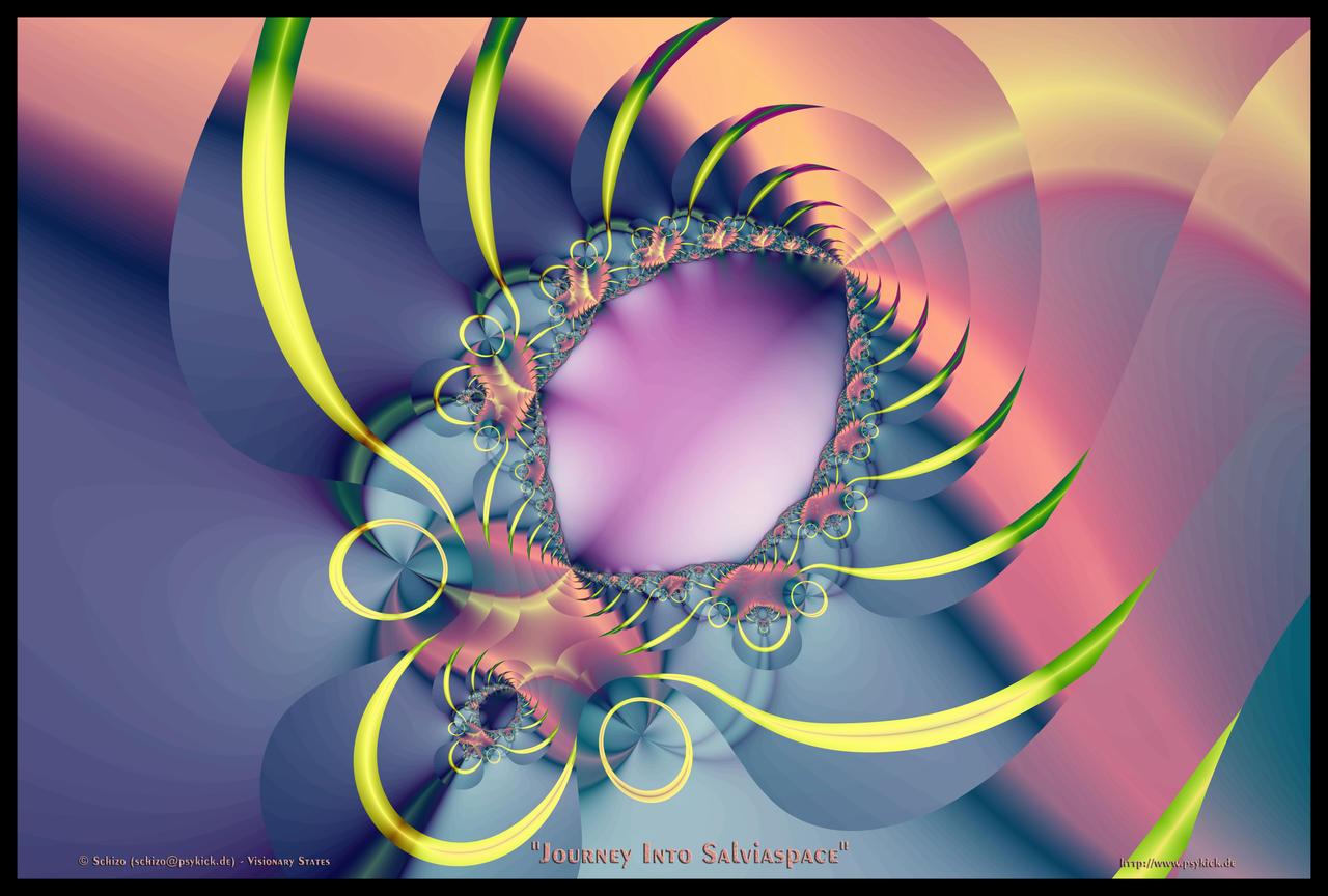 Journey into Salvia Space by schizo604