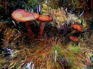 Magic Shroom Forest