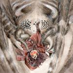 Spinnenriesin