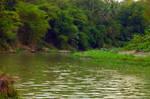 elo river