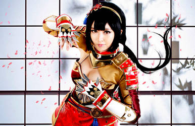 Samurai Warriors 4 : Naotora Ii