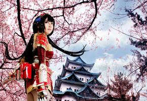 Samurai Warriors 4 : I will protect this castle