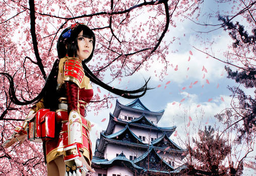 Samurai Warriors 4 : I will protect this castle