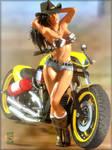 ~Aerodynamic Cowgirl~