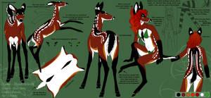 A Deer named Wolf