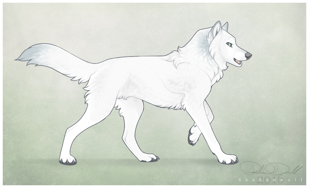 Winterpaw by Shadowwolf