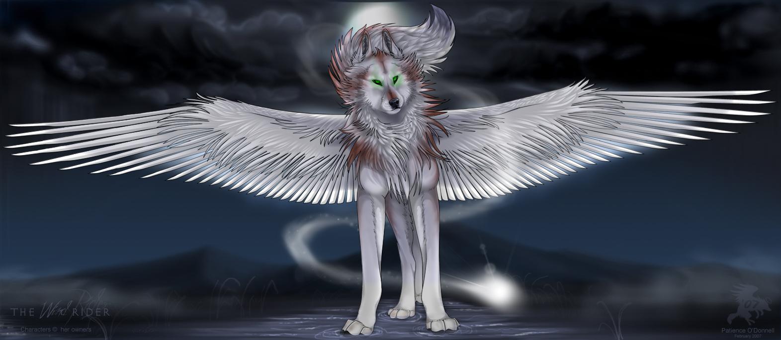 The Wind Rider By Shadowwolf