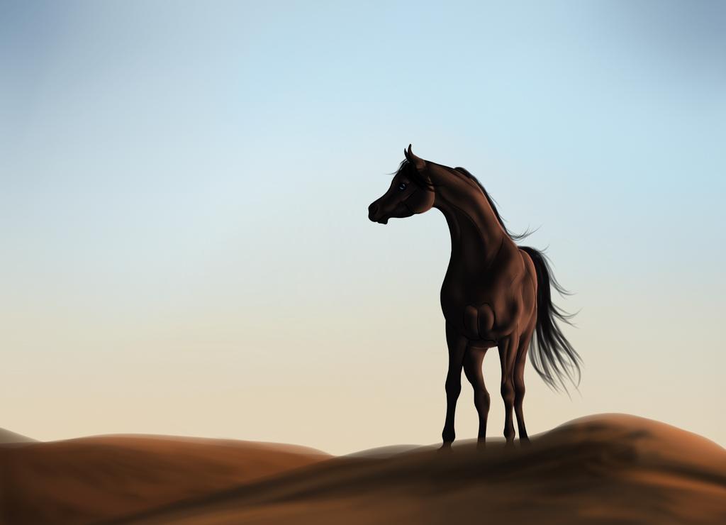 Arabian Horses In The Desert Wallpaper