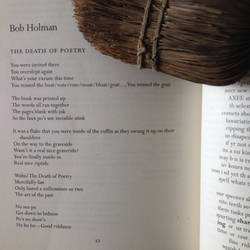 the Death Of Poetry by bob holman by critmass
