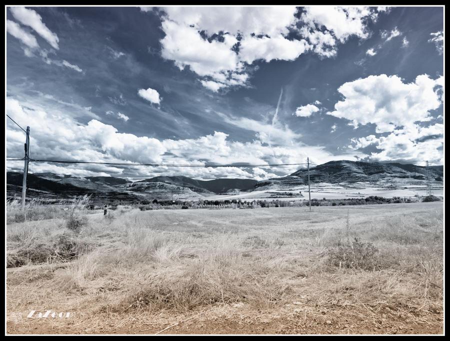 anguiano_fields_by_zazoom-d419vwt.jpg