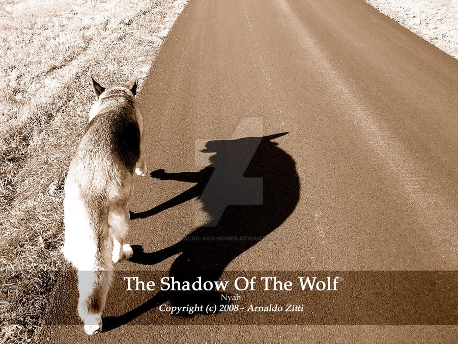 The Shadow Of The Wolf by Arnaldo-aka-Homer