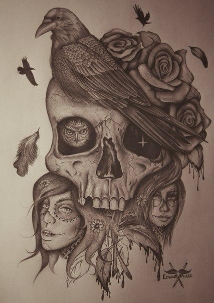 Skull - bird, work for store by EdwardMiller