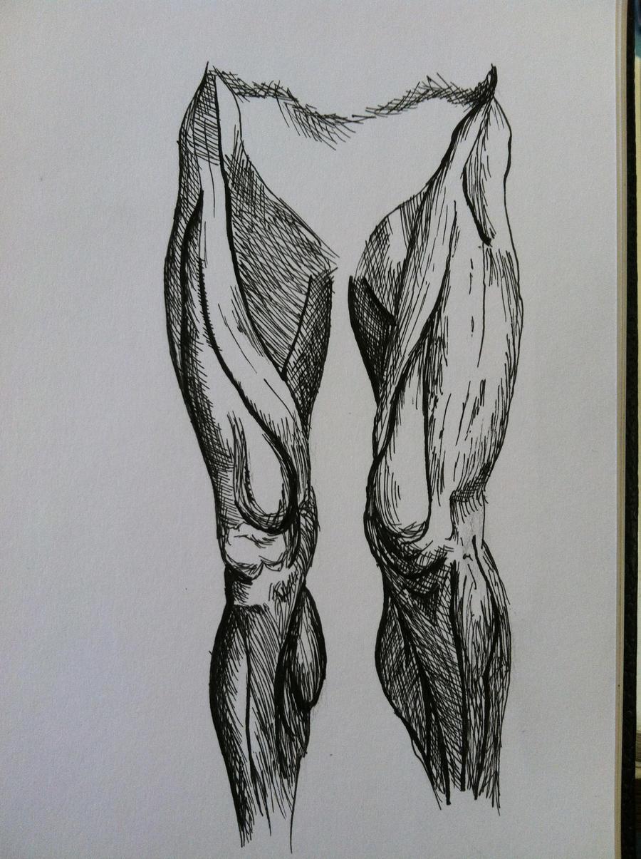 Inked Legs by inuebis