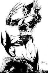 Wolverine 2015