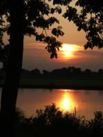 286 by sunsetstock