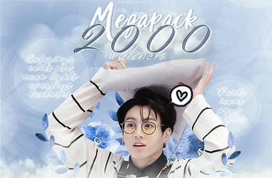 -Megapack 2000 W by MidnightInMemories