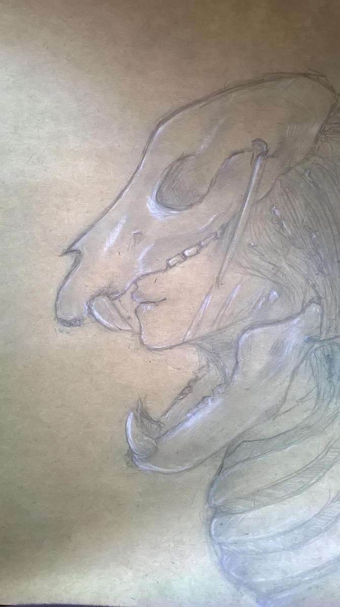 sketch 3 by BruunFalk