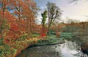 Autumn, on Minnowburn Bridge by Gerard1972