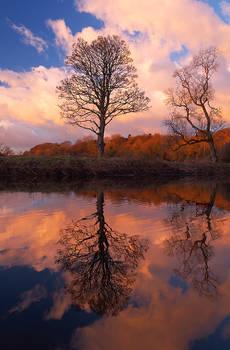 Reflections at Drum Bridge VII