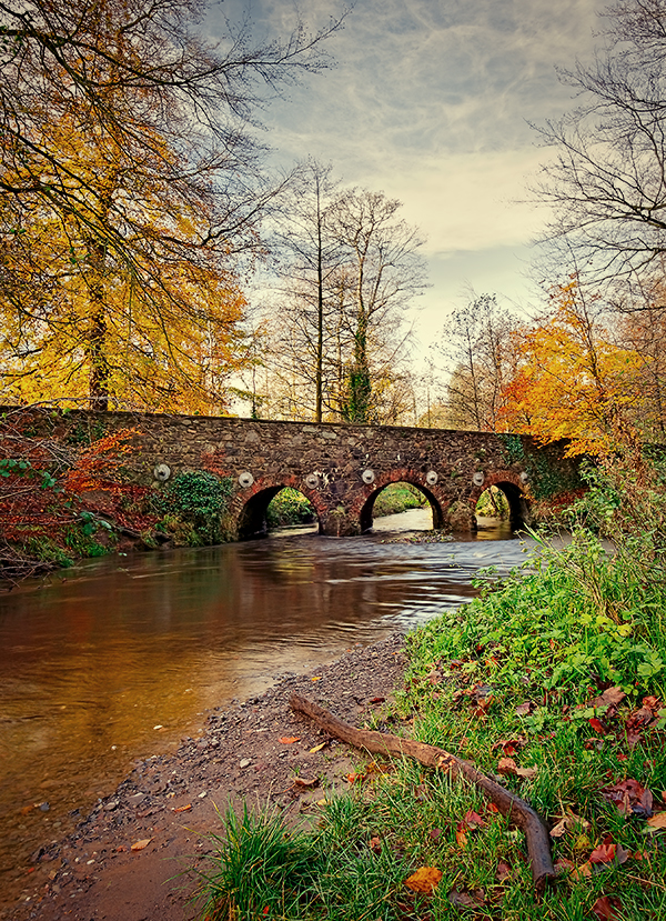 Minnowburn, November 09 R by Gerard1972