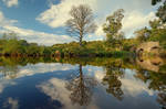 Reflections at Drum Bridge 11
