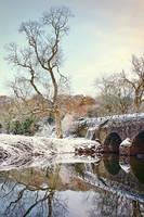 Drum Bridge, Winter Morning II by Gerard1972