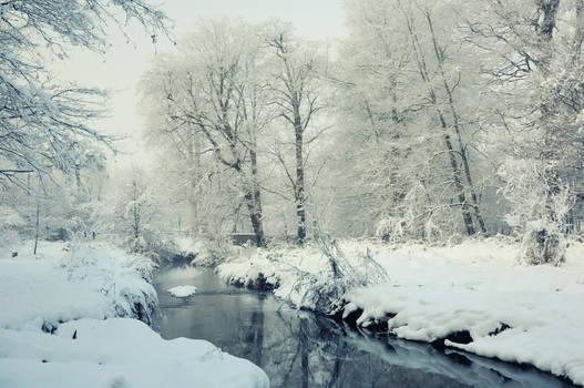 Minnowburn River, Winter 2010