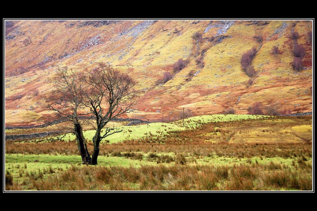 Glen Nevis by Rajmund67