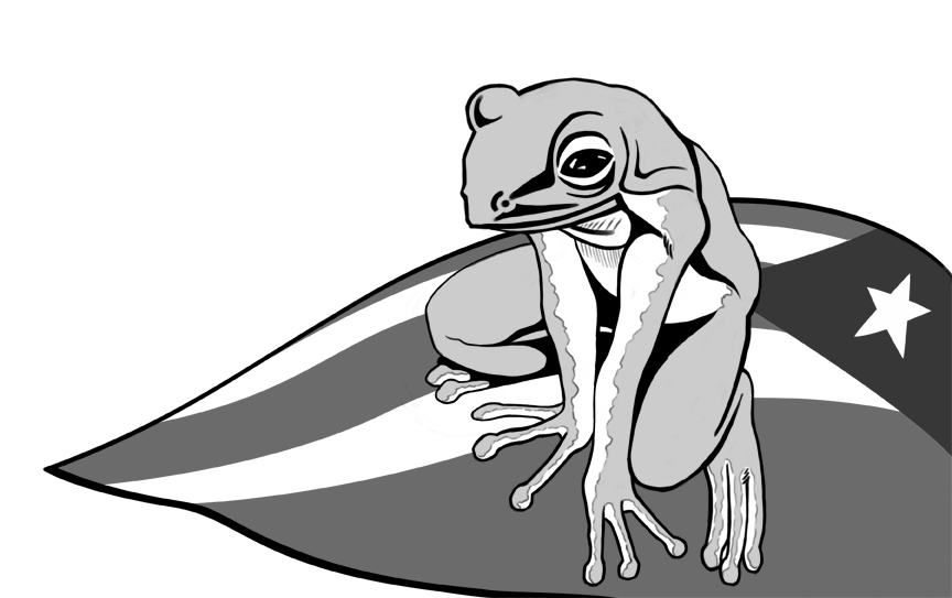 Inked coqui by thelearningcurv on deviantart for Coqui coloring page