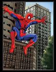The Amazing Spiderman 08