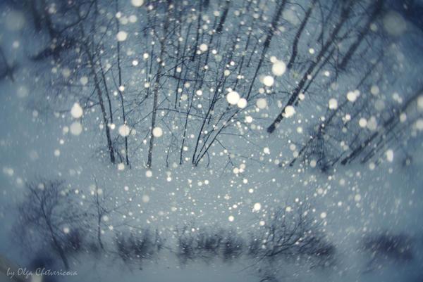 Blizzard by Kelen-olga