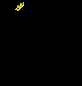 Level-Sketch's Profile Picture
