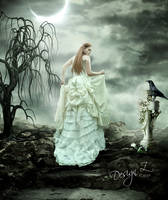A White Rose by sofijas