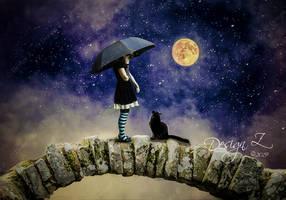 Follow the Moon by sofijas