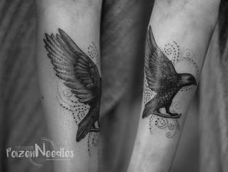 crow by akne5