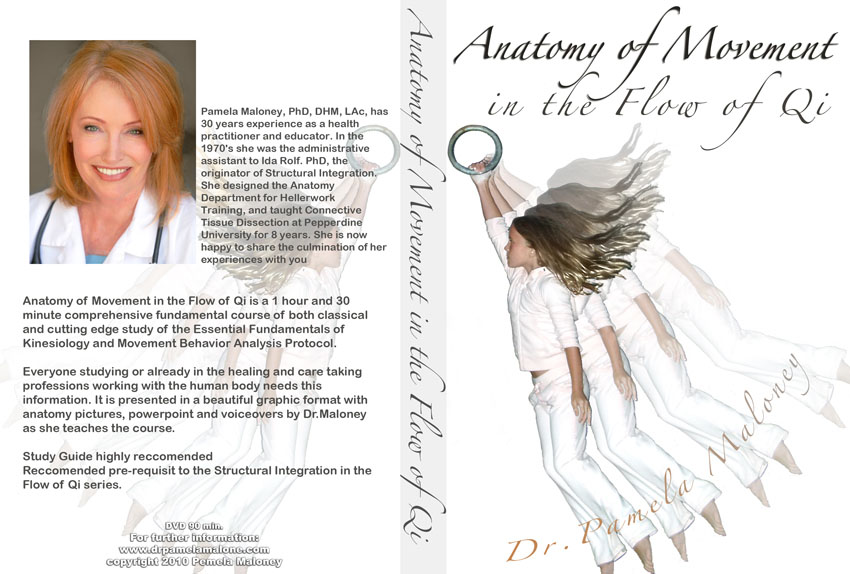 Anatomy of Movement DVD Cover by MagyarEagle on DeviantArt